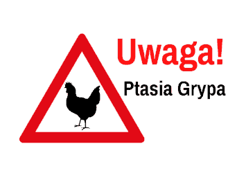 ptasia-grypaslide.png